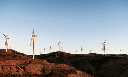 Renewable Energy Reaches Worldwide Feasibility